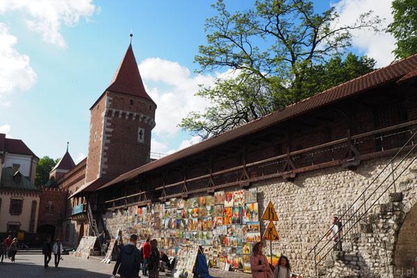 Fragmenty zachowanych murów miejskich.