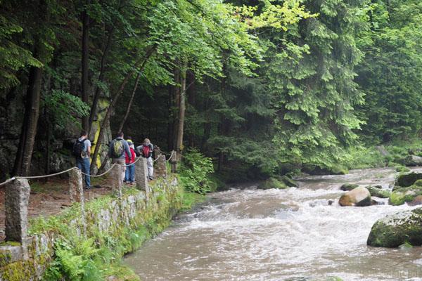 Szlak prowadzi nad samym brzegiem bystrego nurtu Szklarki.