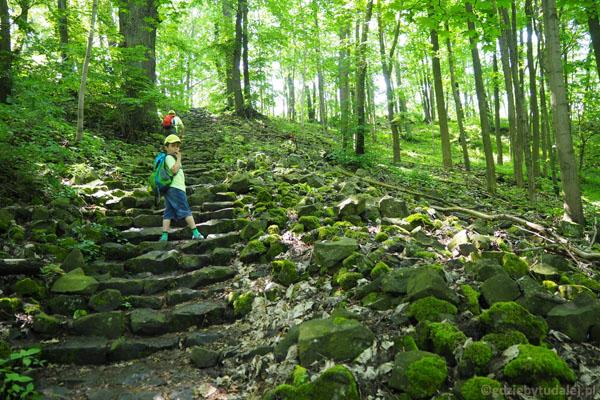Kilkaset bazaltowych schodków wprowadza na szczyt.