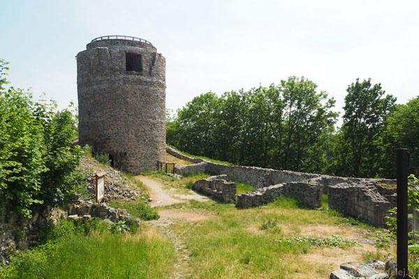 Ruiny zamku książęcego we Wleniu.