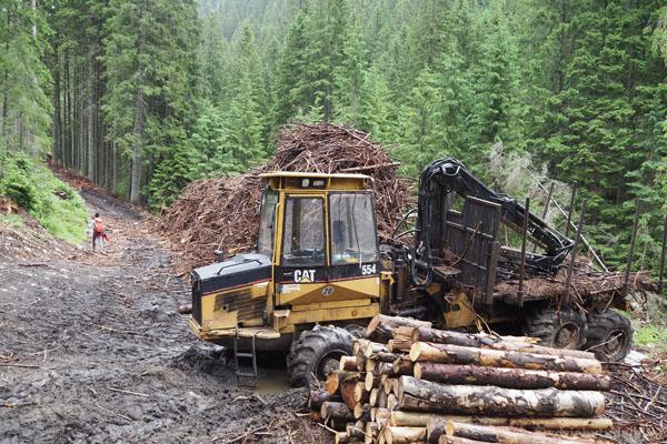 A głębiej w dolinie - ściąganie drewna = błoto na drodze.