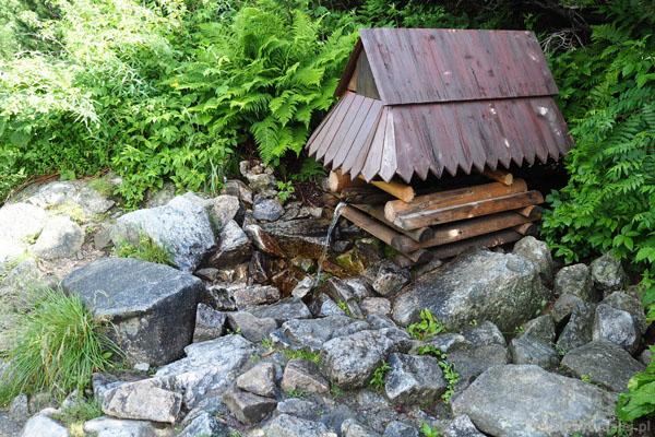 Słowackie ujęcia wody zawsze nam się bardzo podobały.