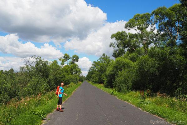 Asfaltowa droga łącząca Famułki Brochowskie z Królewskimi