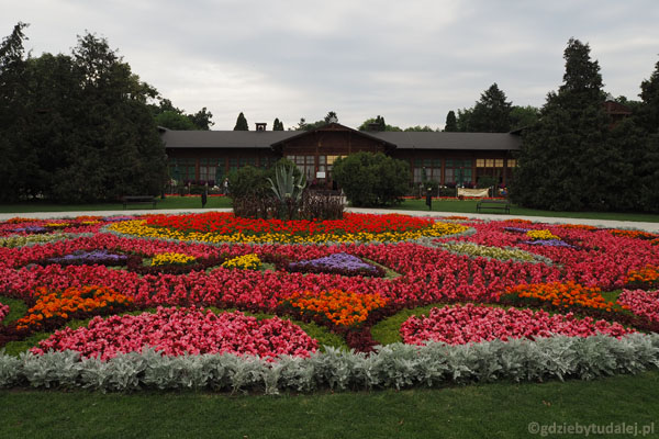 Park Zdrojowy w Ciechocinku tonie w kwiatach.