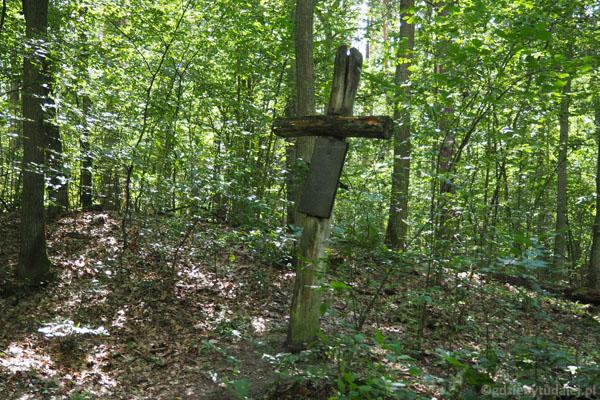 Zagubiony w Puszczy grób polskiego żołnierza z okresu II wojny światowej