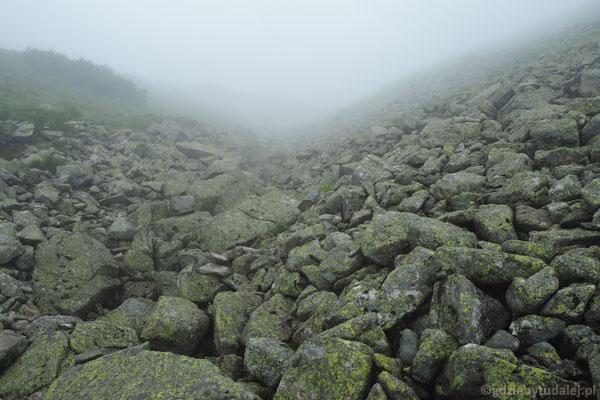 Zejście spod Jarząbczego do Doliny Jamnickiej wygląda właśnie tak.