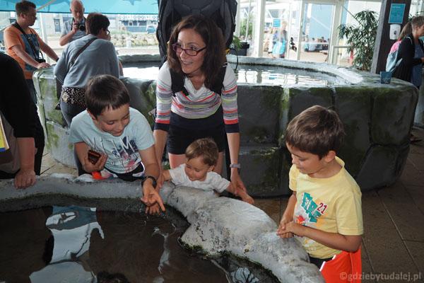 Największa atrakcja dla dzieci to akwaria, do których można wkładać ręce. Kto oglądał 'Gdzie jest Dori'? :)