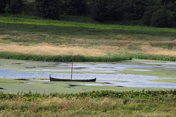 Gdzieś na horyzoncie widać wikińską łódź