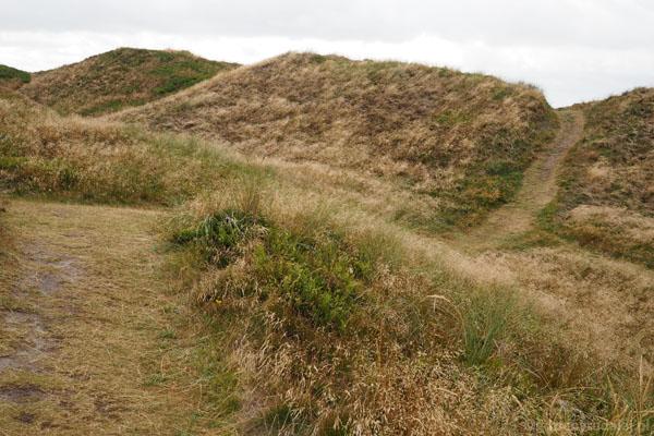 Ścieżka wijąca się przez wydmy