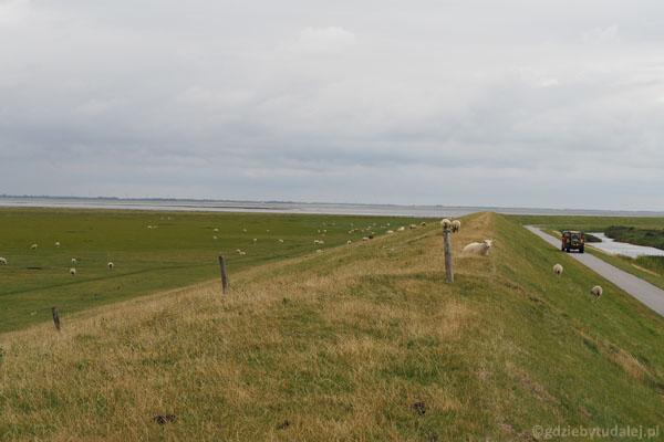 Wał chroniący Mandø przed znaczniejszymi przypływami