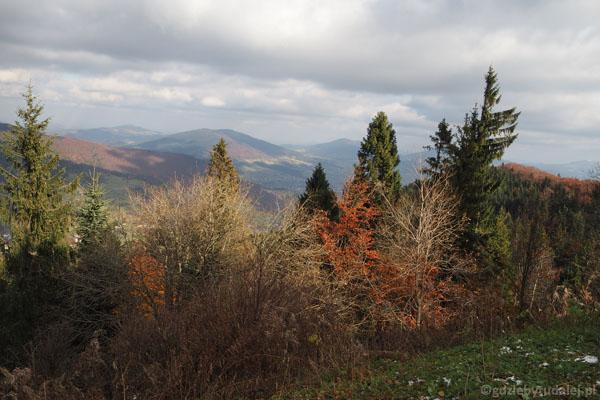 Widok z Lubonia w kierunku północno-wschodnim.