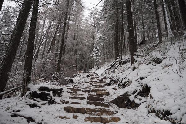 Szlak schodzi stromo w dół w kierunku Polany Strążyskiej.
