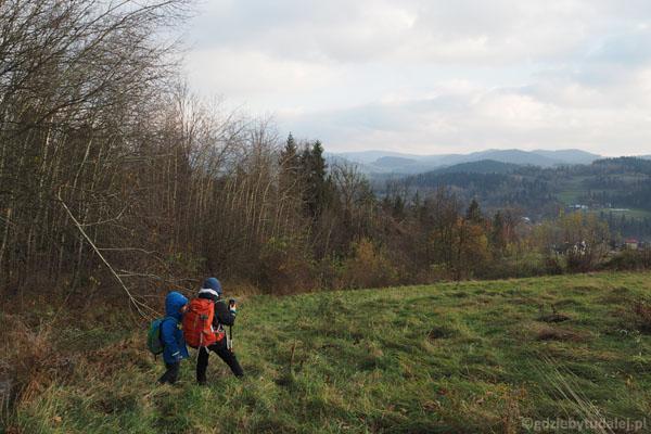 Końcówka niebieskiego szlaku. Po wyjściu lasu otwierają się szersze widoki.