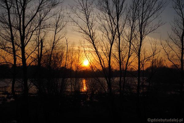 Zachód słońca w rezerwacie 'Wikliny Wiślane'.