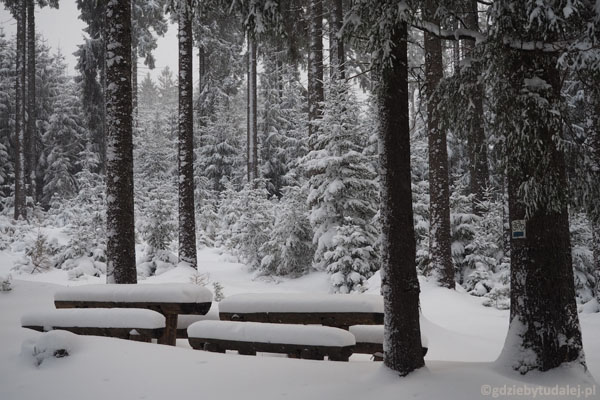 Do miejsca odpoczynku trzeba brnąć po pas w śniegu