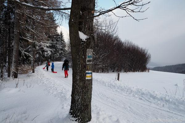W lecie to licznie uczęszczany szlak, w zimie wokół pustka.