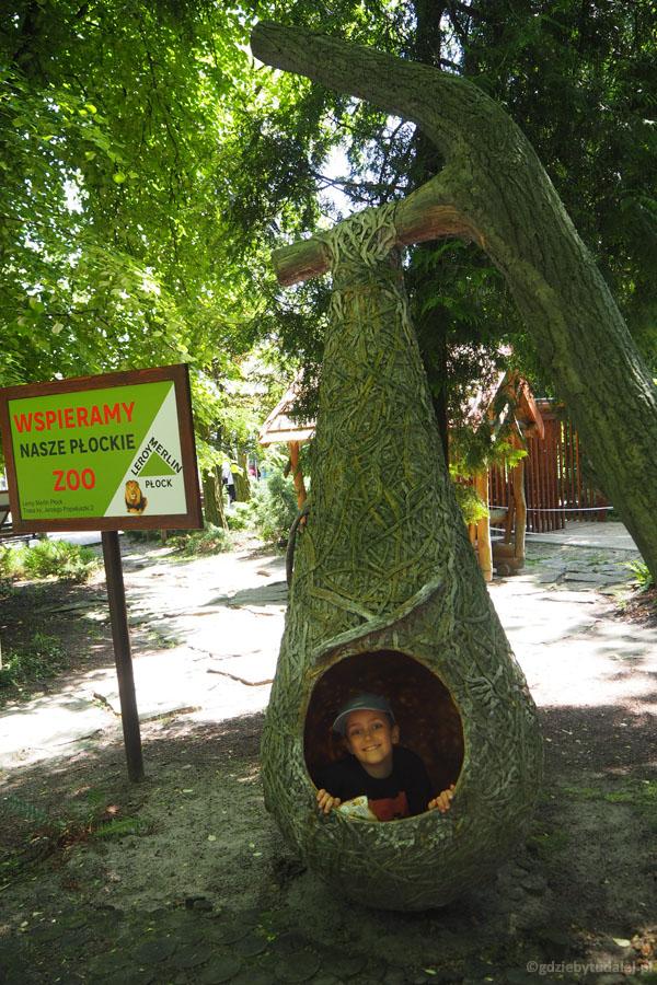 Zoo w Płocku