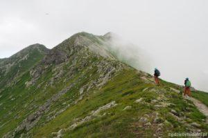 Dolina Żarska - Przysłop